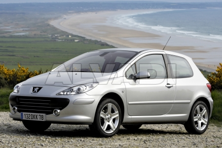 Peugeot 307 (3_)