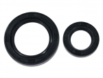 Shaft Seal Set, engine